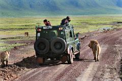 Africa-Tanzania_181317194