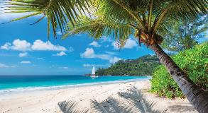 Jamaica_1039519720_1