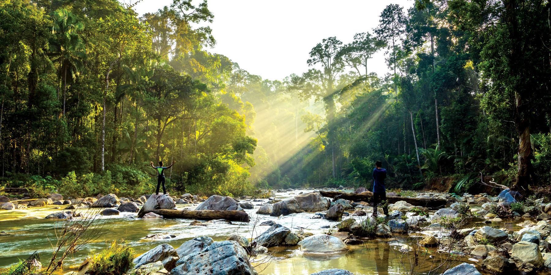 Malaysia-Taman-Negara-National-Park_701854222_1