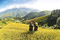 Vietnam_437501428_1