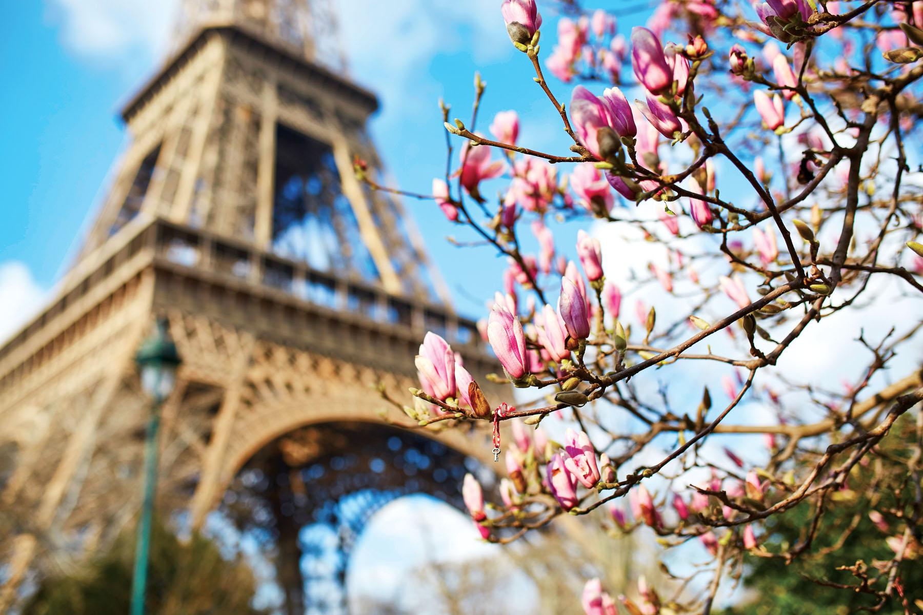 France-Paris-Eiffel_788309164_1