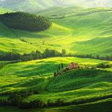 Italy-Tuscan_145991147
