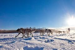 Norway-Arctic_70990540